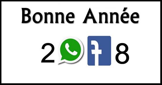 Bonne année 2018 240