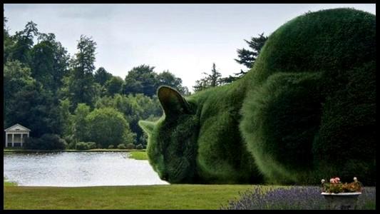 Sculpture végétal  - Page 2 632