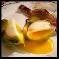 Vos créations culinaires Avocat23