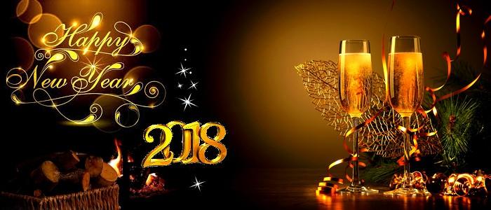 Bonne année 2018 Bonne_13