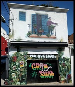 les plus beaux Street Art  - Page 4 Pertus10