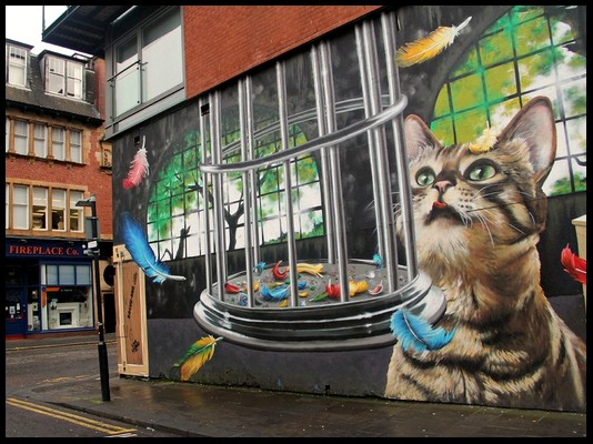 les plus beaux Street Art  Street15