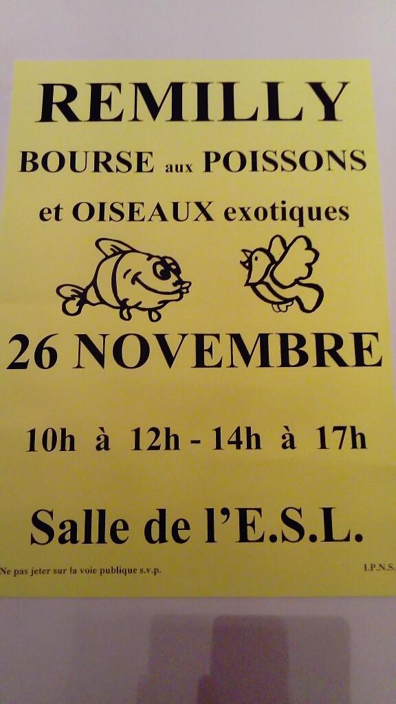 Bourse Remilly (57) - 26 novembre 2017 Bourse10