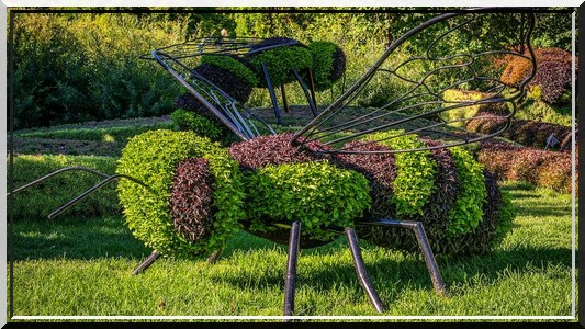 Sculpture végétal  - Page 2 241