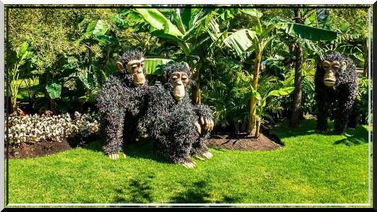 Sculpture végétal  - Page 3 335