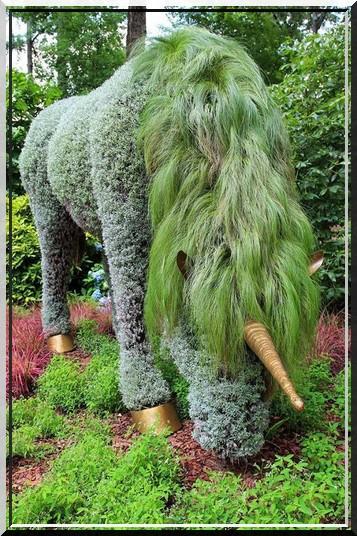 Sculpture végétal  - Page 2 421