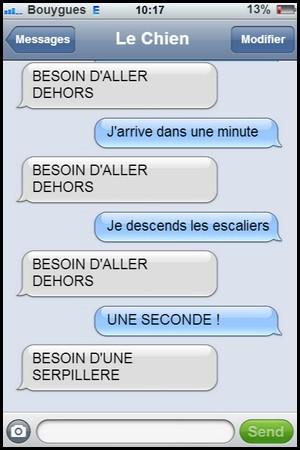 Humour sur les texto !!! - Page 2 Chien_10