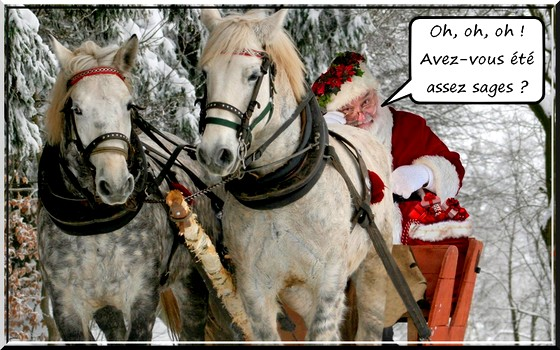 Joyeux Noël à tous ! - Page 2 Noyl_f10