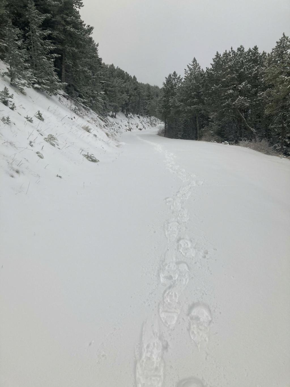 Raquettes à neige  63092110