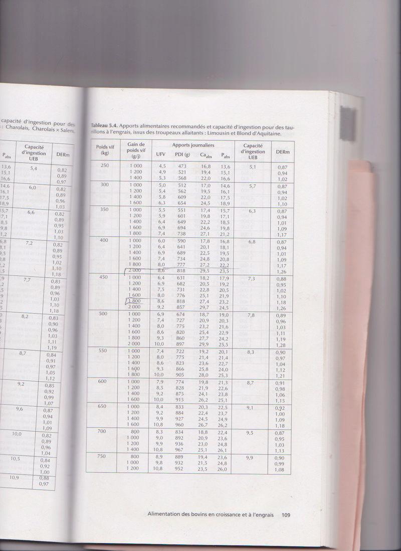 ration VA et génisse charolaise - Page 2 Numyri10