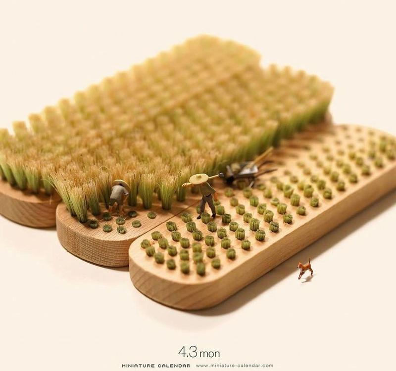 Des touffes d'herbes à gogo ... 22815610