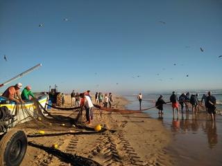 14 – Mercredi 27 septembre 2017 - Costa da Caparica – Plage, brouillard, surf Img_2043