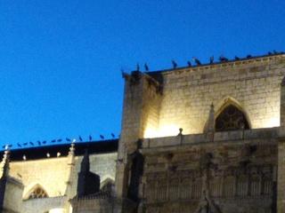 16 - Vendredi 29 septembre – Route du retour – Etape à Palencia en Espagne Img_2049