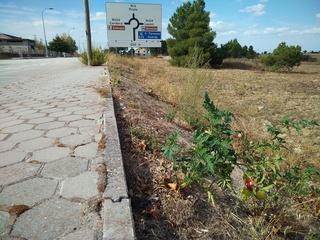 16 - Vendredi 29 septembre – Route du retour – Etape à Palencia en Espagne Img_2055