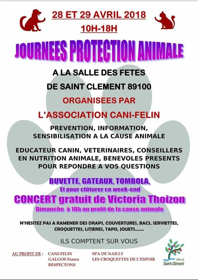 Journées de la Protection Animale 2018av10