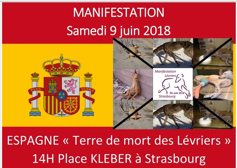 Manif Strasbourg  30710310