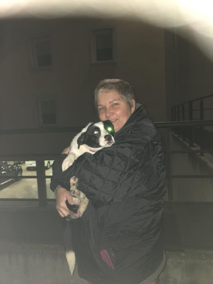BELLE , née en 2016 - ( En pension à Lasi) - Réservée adoption par Véronique S.(Suisse) Belle110