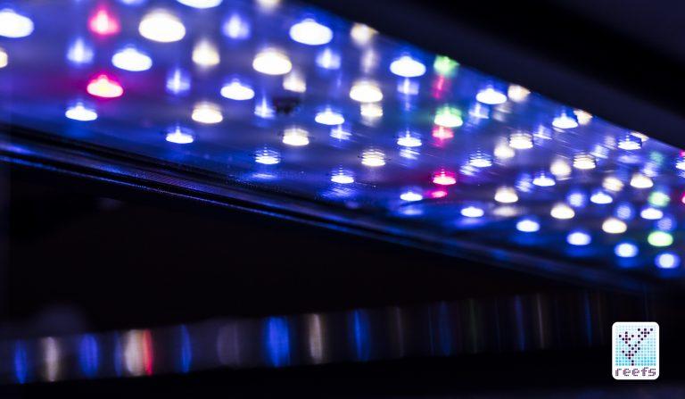 AQUAMAXX NEMO LIGHT : Powerful, Stylish design and affordable PART 1 Dsc66910
