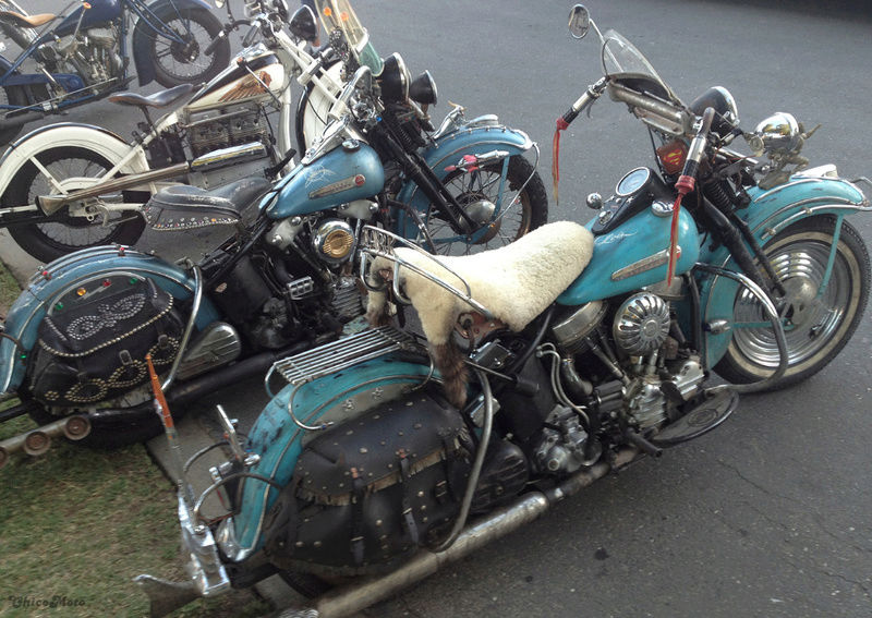 Les vieilles Harley Only (ante 84) du Forum Passion-Harley - Page 39 Capt2538