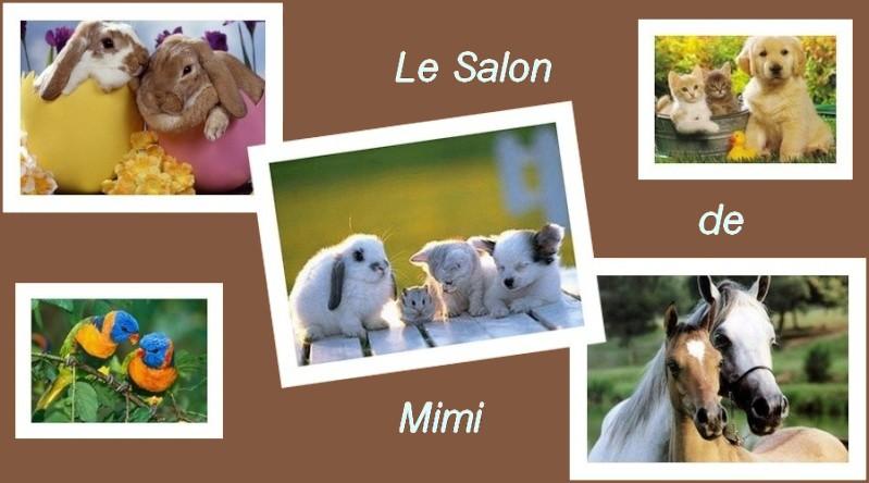 Le Salon de Mimi