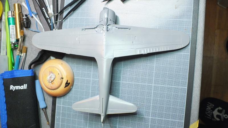 A6M2 type 21  Tamiya ref:61016 from the box, avion capturé par les américains - 1/48 Dscf2113