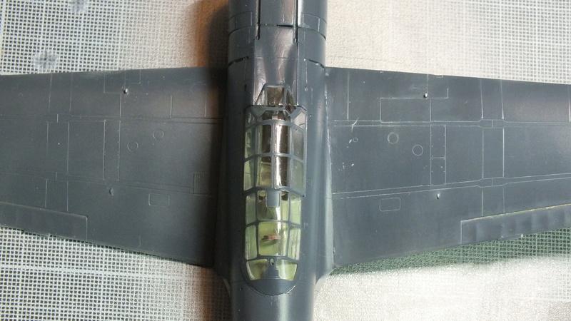 A6M2 type 21  Tamiya ref:61016 from the box, avion capturé par les américains - 1/48 Dscf2121