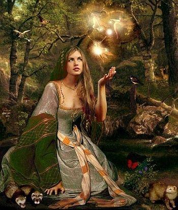 La forêt magique des fées 16300510
