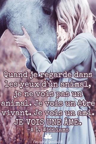 La spiritualité et la conscience chez les animaux 24bde710