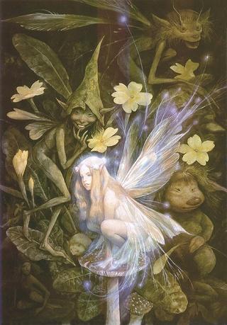La forêt magique des fées Faerie11