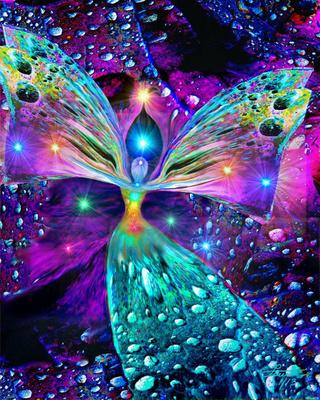 Papillons de la Terre, envolez-vous, légers, libres ! Il_ful10