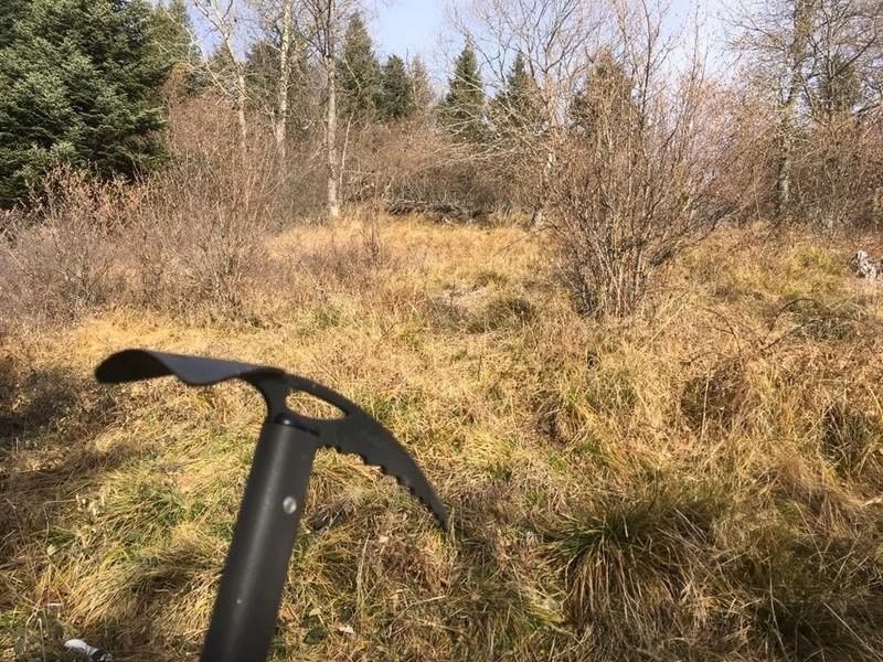 Ma saison de chasse  4e418910