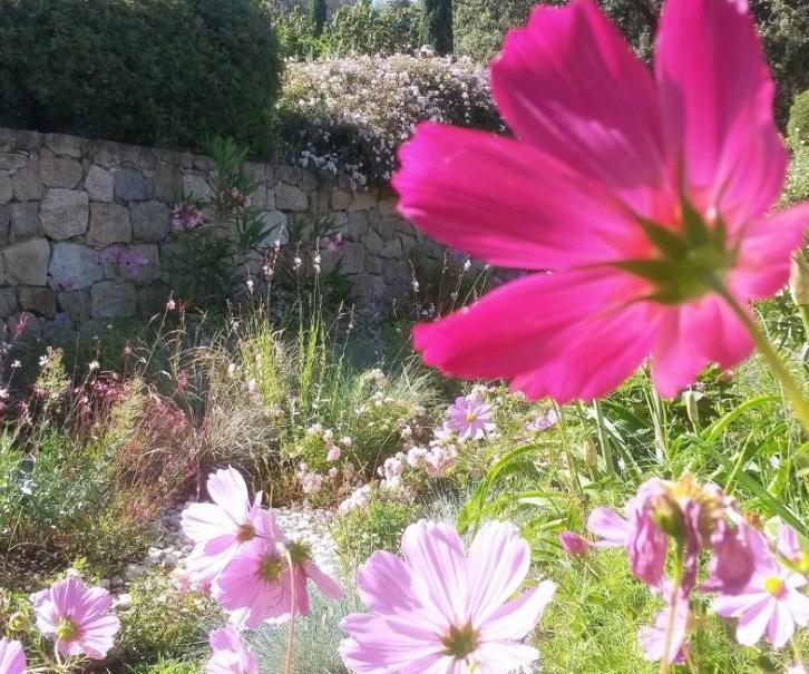 En France, huit jardins d'exception à découvrir Parc-d10
