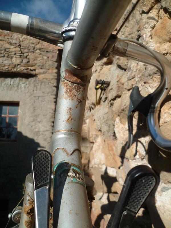 Un autre CX ni fait ni à faire: une hirondelle se prépare à la poussière  - Page 2 P1070530