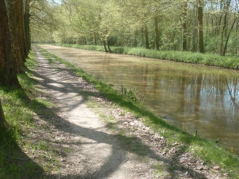Eurovélo 3, canal du Loing, canal de Briare P1080019