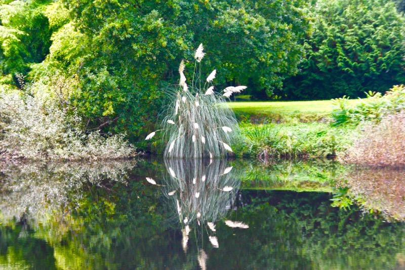 l'Aulne entre Chateaulin et Port Launay Img_5210