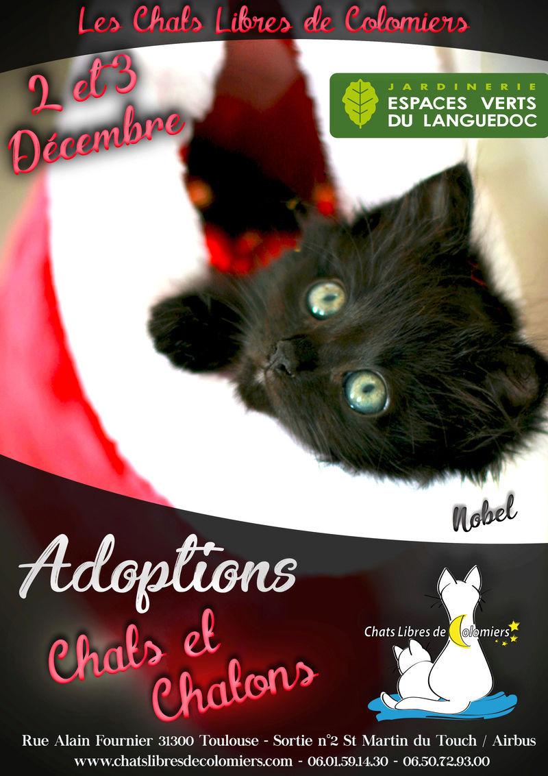 Journées Adoptions les 2 et 3 Décembre aux Espaces Verts du Languedoc Ja_noe12