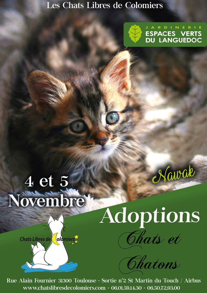 Le 4 et 5 Novembre aux Espaces Verts du Languedoc Nov312