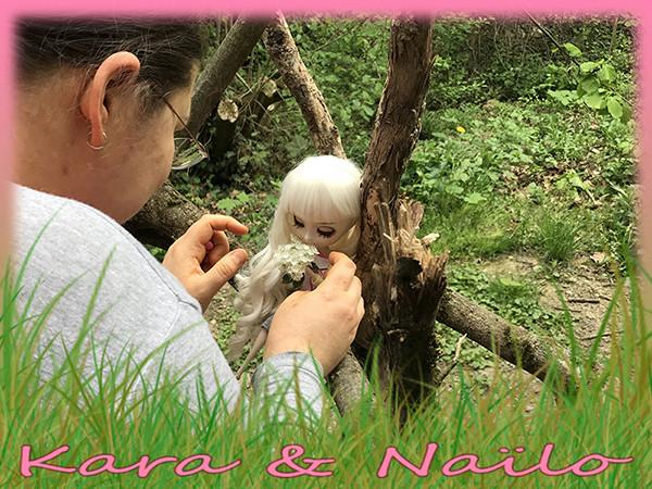 Aide aux swap et nsp - La WISHLIST de vos poupées! Wishli17