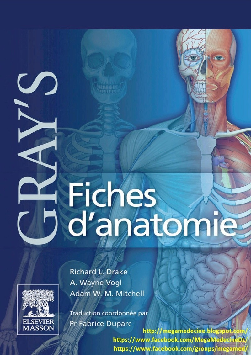 Livres Médicales - Gray's Fiches d'anatomie Gray_s10