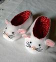 Petits chaussons Img_2018