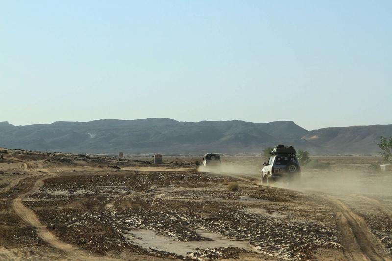 Retour raid des sables 2017 - Page 5 Raid_663