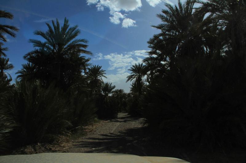 Retour raid des sables 2017 - Page 5 Raid_695
