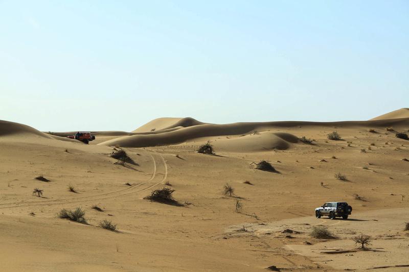 Retour raid des sables 2017 - Page 5 Raid_852