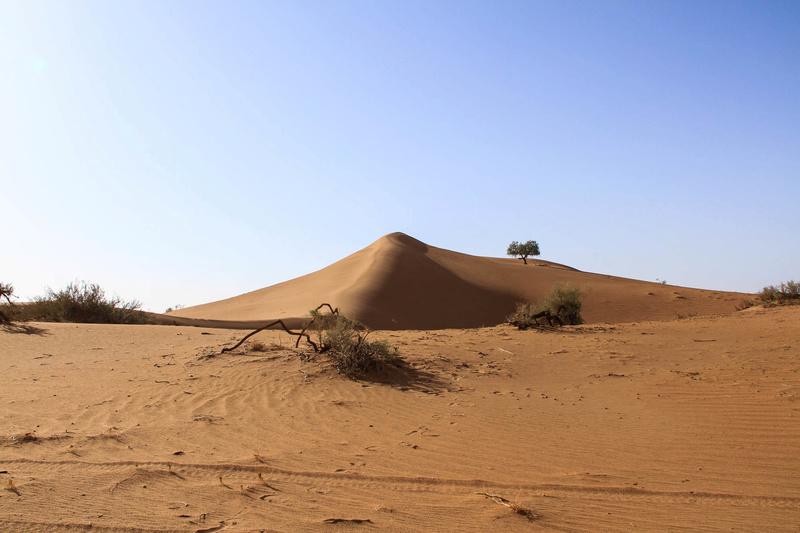 Retour raid des sables 2017 - Page 5 Raid_856