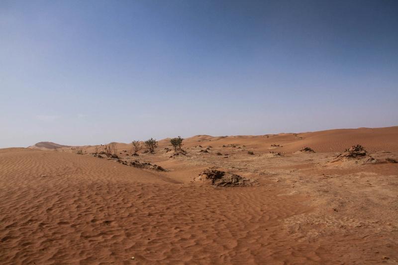 Retour raid des sables 2017 - Page 5 Raid_884