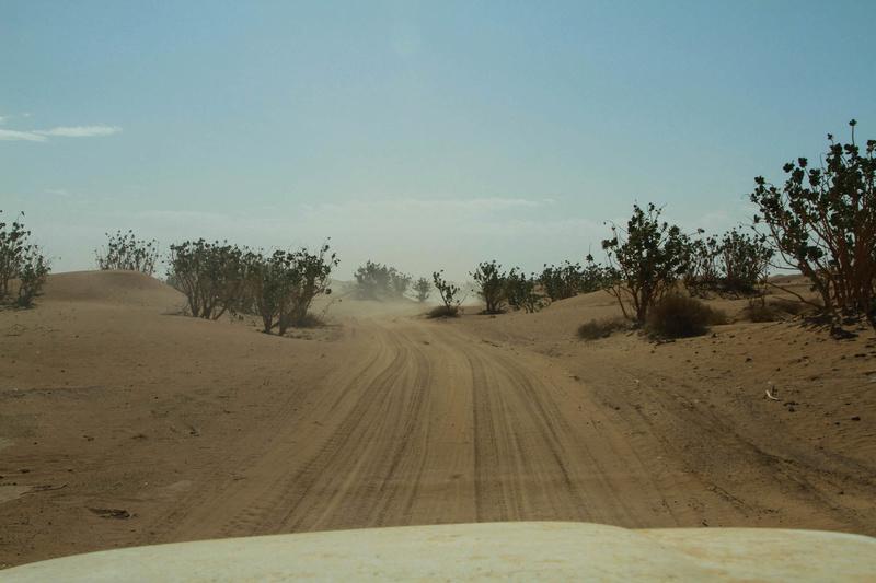 Retour raid des sables 2017 - Page 5 Raid_885