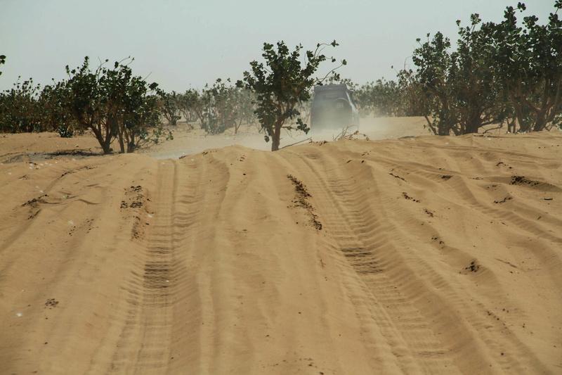 Retour raid des sables 2017 - Page 5 Raid_890