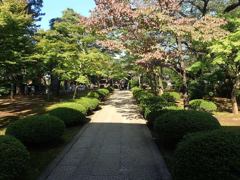 Voyage au Japon : fin jour 8 [page 6] - Page 2 Japon140