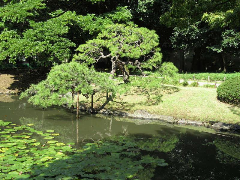 Voyage au Japon : fin jour 8 [page 6] Japon248