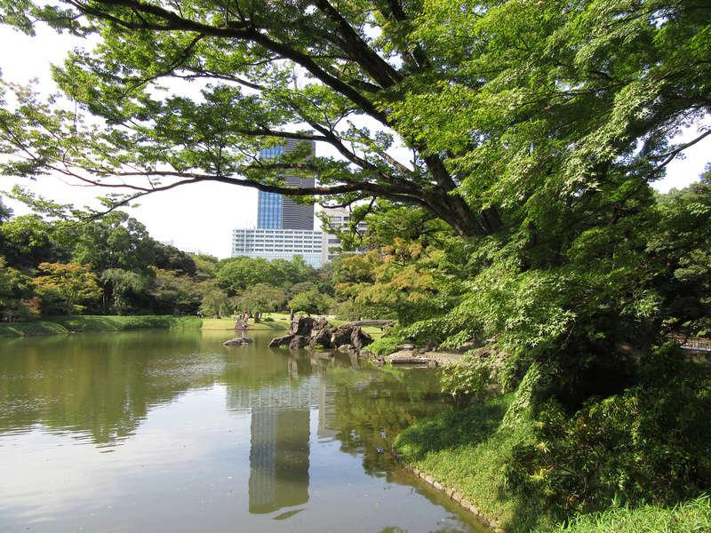 Voyage au Japon : fin jour 8 [page 6] Japon259